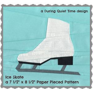 Ice Skate Coverc