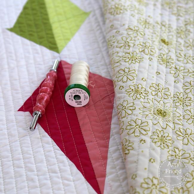 Plumb Line Quilt Detail 2 by Amy Friend